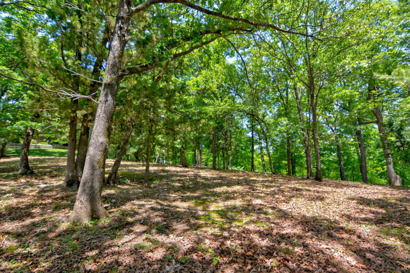 Cedar Crest Ground-3
